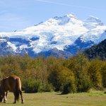 Mount Tronador - Patagonia