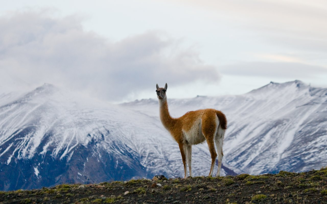 argentina photo gallery - terra argentina tailor-made travels