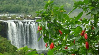 Roadtrip from the Deserts to the Tropics: Salta and Iguazu