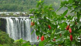 roadtrip argentina from salta to iguazu falls