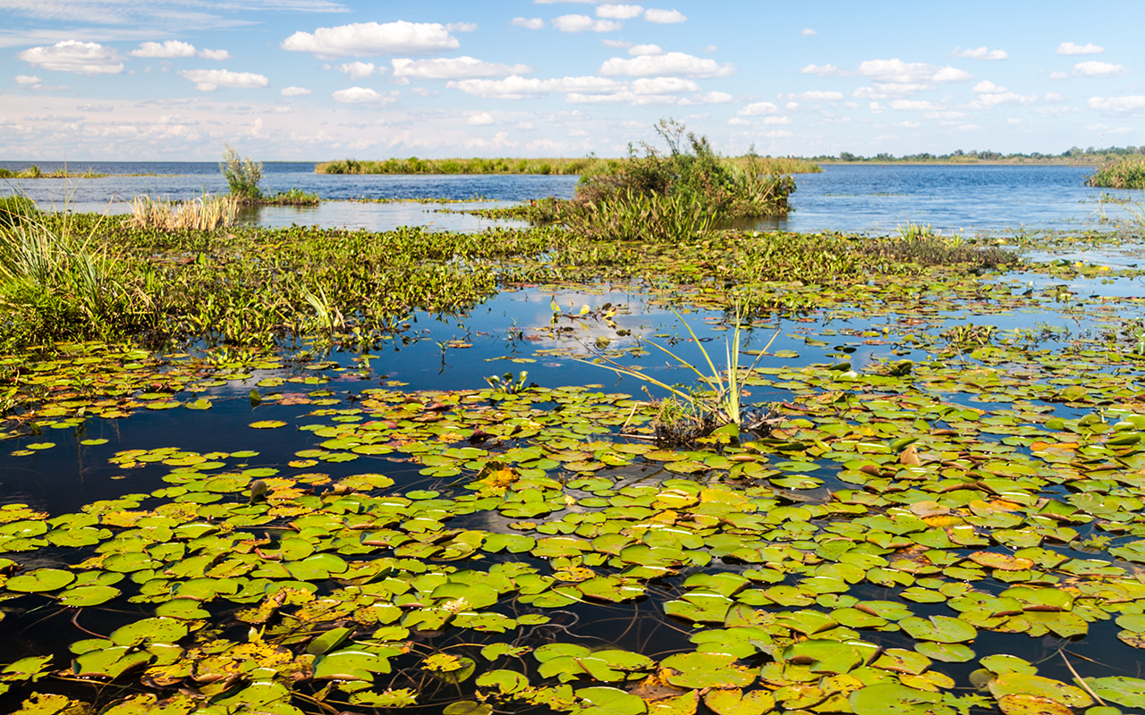 argentina nature wildlife tour - terra argentina